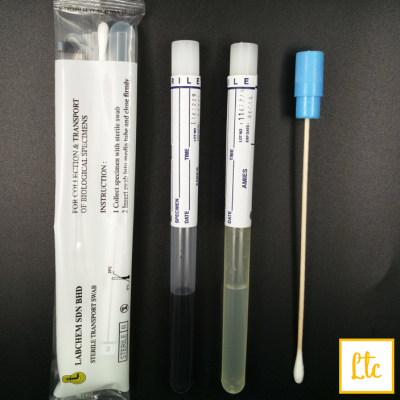 Transport Swabs with Media, Amies, with Charcoal, wooden shaft