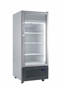 Single Glass Door Upright Freezer